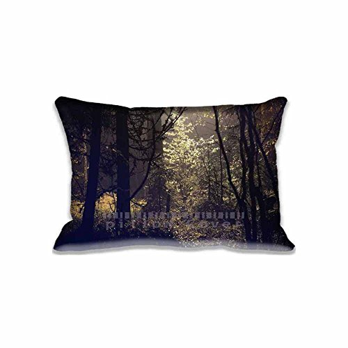 Flare Bokeh Nature Personalized Pillow case/Kissenbezüge Diy Photo Pattern Fantasy Unique Couch Pillow Covers with Zippers , Cool Custome Pillows Decor case/Kissenbezüge for Sofa (Fantasy-custome)
