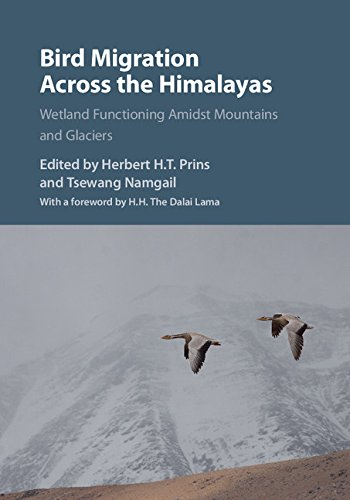 bird-migration-across-the-himalayas-wetland-functioning-amidst-mountains-and-glaciers