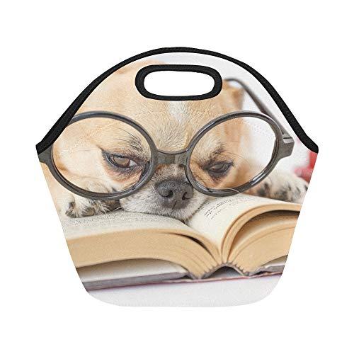 Isolierte Neopren-Lunchpaket Cute Dog Brillen Lesebuch über große wiederverwendbare thermische starke Mittagessen-Tragetaschen für Lunch-Boxen für im Freien, Arbeit, Büro, Schule