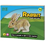 Build and Learn Rabbit