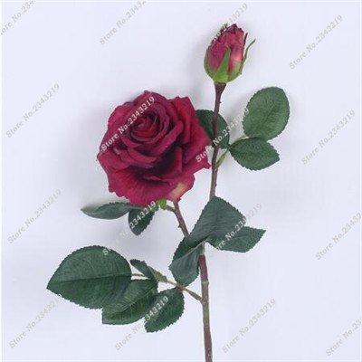 Exotique Miniature Bonsai Fleur Rose Rosas Graine Bricolage jardin et maison embellissant de purification d'air 110 Pcs/Sac 14