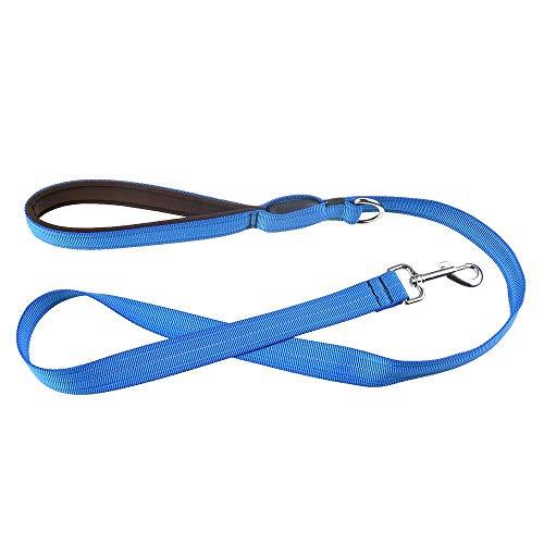WINNER POP Led Hundekette - USB wiederaufladbare 120cm reflektierende Nacht Sicherheit Pet Traction Led-Leuchten halten Sie und Ihren Hund sicher -