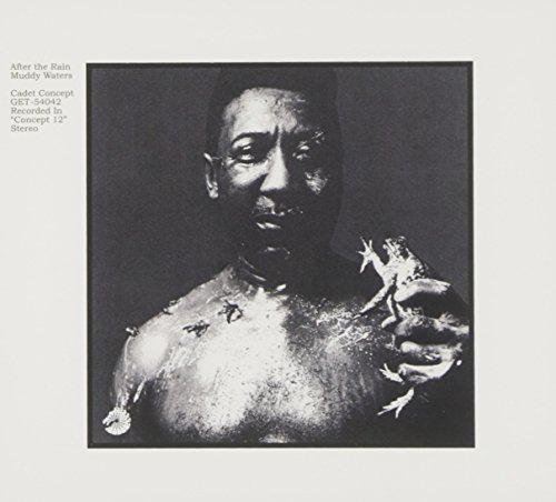 Muddy Waters: After the Rain (Audio CD)