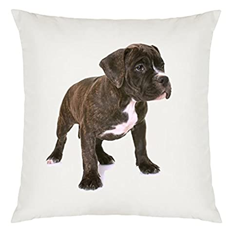 American Staffordshire Terrier Puppy Image Design Large Cushion Cover with Filling