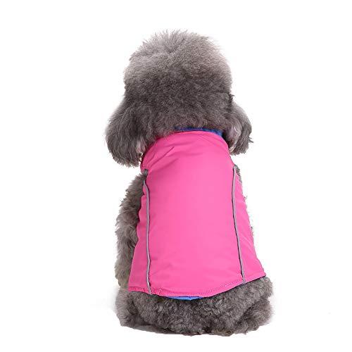Fenverk Hund Regenmantel Wasserdicht Haustier Jacke Hunde Winter -