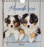 Hunde 2019: aufstellbarer Postkartenkalender