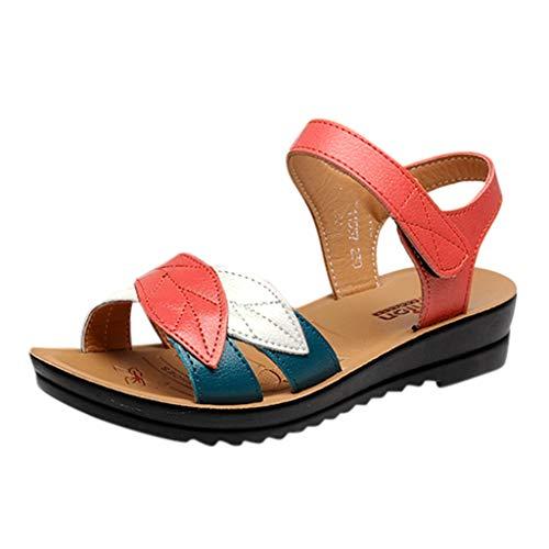 Damenschuhe aus weichem Leder Sandalen Flache Schuhe Bequeme Freizeitschuhe mit niedrigem Absatz Sommer Sandale mit Touch Fasten Strap
