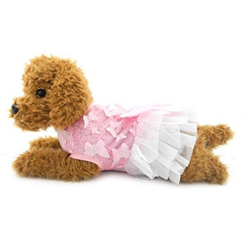 ranphy Kleine Hunde/Katzen floralen Prinzessin Kleid für Mädchen Party Formelle Kleidung Pet Kleidung (Kleid Floral Holiday Christmas)