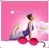 Bola elegante de la pesa de gimnasia de la rosa de las mujeres para la salud
