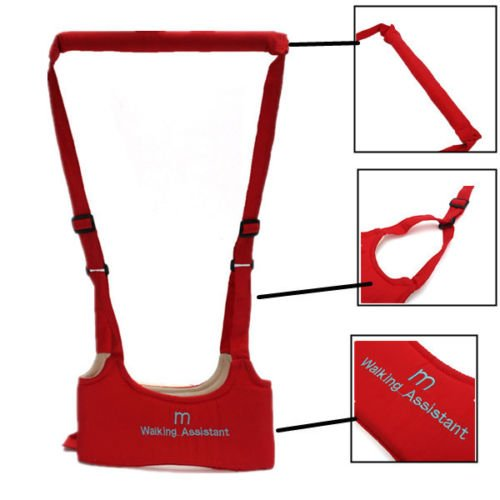 Baby Safety Belt / Baby Walking Belt - Walking Harness Walker for Baby Toddler,Safe Stand Hand Held Walking Helper,Walking Belt Learning To Walk Assistant Trainer for Infant Child,Adjustable Seatbelt Harness Childs WalkIng Belt By Shuban (Red)