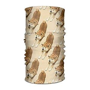 RGFJJE Sturmhauben Unisex Stylish Akita Dog Cute Pattern Quick Dry Microfiber Headwear Outdoor Magic Bandana As Neck Gaiter Head Wrap Headband Scarf Face Mask Ultra Soft Elastic One Size