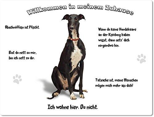 blechschild-warnschild-turschild-aluminium-15x20cm-willkommen-in-meinem-zuhause-motiv-greyhound-wind