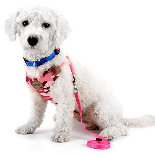 SMALLLEE_LUCKY_STORE Arnés mascota malla suave perros