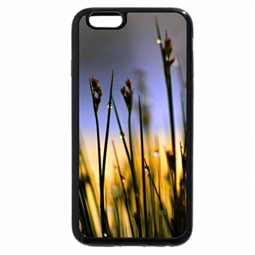 iPhone 6S / iPhone 6 Case (Black) DROPS of MORNING MIST