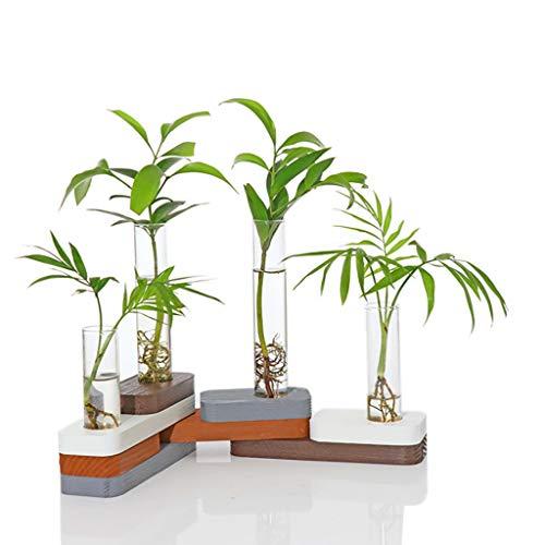 Ivolador Desktop Glas Pflanzgefäß Reagenzglas Vase mit Bausteinen, Umwandlung DIY Holzständer für Hydrokulturpflanzen -