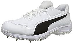 Puma Men Cricket Shoes Price List In India 25 January 2019 Puma