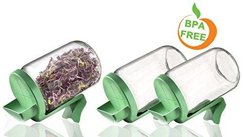 Germline – Sprossengarten im Glas – Sprossengarten im Glas Germline im Dreierpack