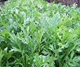 Bobby-Seeds Kräutersamen Shungiku, Salatchrysantheme Portion