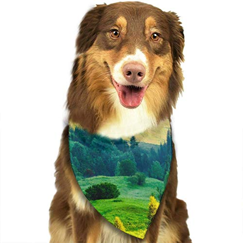 Rghkjlp Wizard of Castle Peak Pet Bandana Triangle Dog Cat Neckerchief Bibs Scarfs Accessories for Pet Cats and Baby (Big Baby Kopf Kostüm)