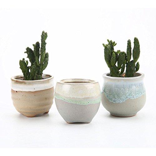 t4u-glacure-fluide-mini-pots-pastel-serie-3-forme-ensemble-ceramique-pot-plante-recipient-pepiniere-