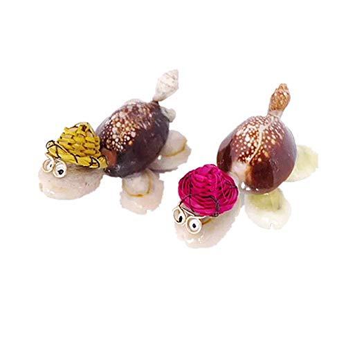 YWJHY Muschelschale Fertigt Kleine Geschenkideen Mit Brille Kleine Schildkröte Dr.Neue Ornamente,Als Zeigen,Einheitsgröße