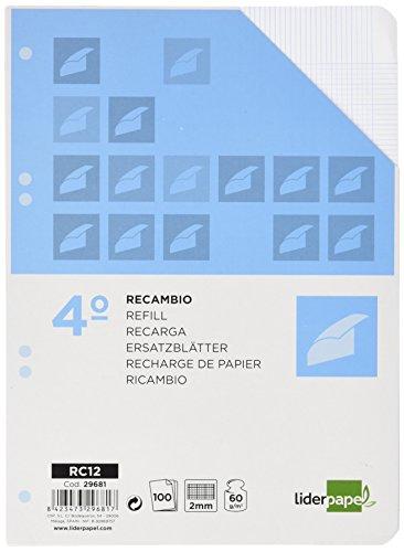 RECAMBIO LIDERPAPEL CUARTO 100 HOJAS 60G/M2 MILIMETRADO