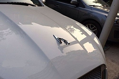 embleme-jaguar-pour-xke-xjs-xk-xf-xkr-xj6-xk8-xj8-chrome