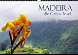Madeira die Grüne Insel (Wandkalender 2020 DIN A3 quer): Madeira ist Europas immergrüne Insel im Atlantik. (Monatskalender, 14 Seiten ) (CALVENDO Orte) - M.Polok