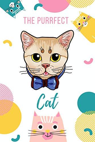 The Purrfect Cat: Munchkin Cat -