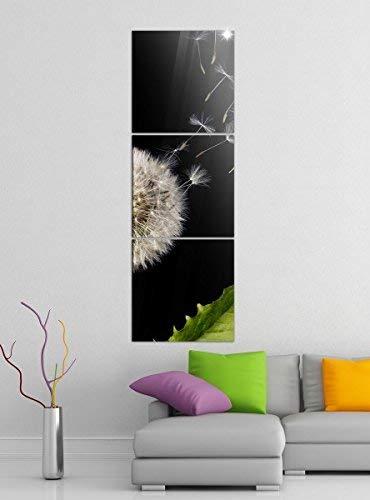 Acrylglasbilder 3 Teilig 50x150cm Pusteblume fliegende Samen Blume vertikal Druck Acrylbild Acrylbilder Acrylglas 14?6866, Acrylgröße 9:Gesamt 50x150cm
