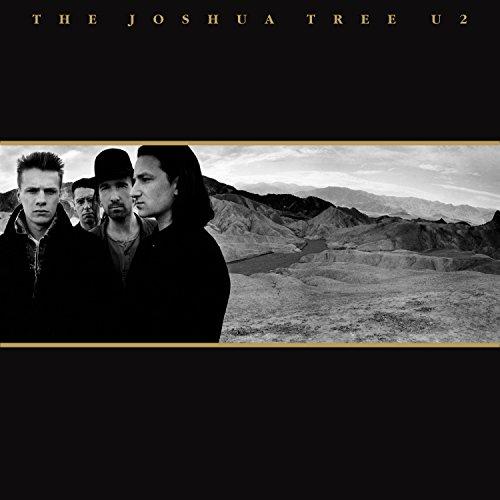 The Joshua Tree (2lp) [Vinyl LP] (U2-the Joshua Tree)