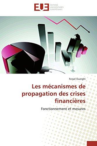 Les mécanismes de propagation des crises financières