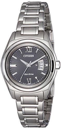 Citizen FE1050-52E  Analog Watch For Unisex