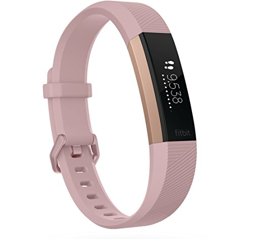 fitbitalta-hr-special-edition-gunmetal-pink-rose-gold-small