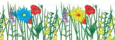 fentre-voler-cas-flower-avec-fleurs