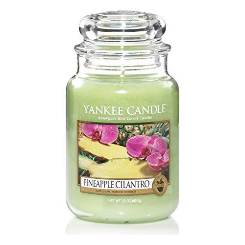 YANKEE CANDLE Pineapple Cilantro Kerze, Glass, ZIELONY, L