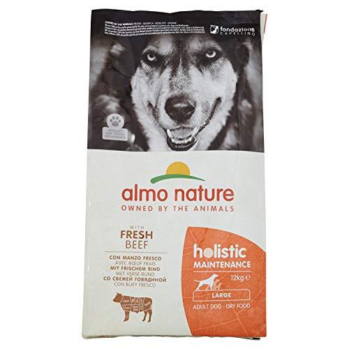 almo nature Holistic Maintenance Large con Manzo Fresco - crocchette Premium per Cani Adulti con Carne Fresca - specifico per Cani di Taglia Large - No OGM -Sacco 12kg