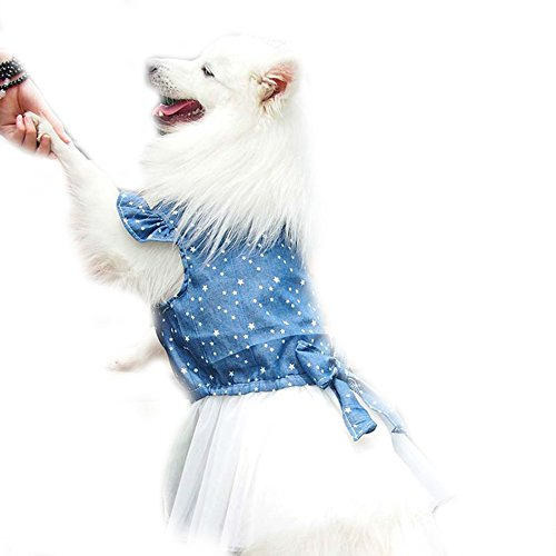 FLAdorepet Polka Dot Big Große Hunde Prinzessin Kleid Tutu Rock Golden Retriever Pitbull Sommer Hund Kleidung Hoodie Kostüm, XL, Blau
