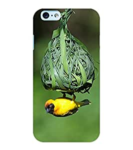 ColourCraft Bird and nest Design Back Case Cover for APPLE IPHONE 6S