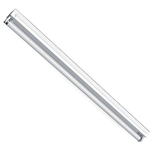 Leuchte Lichtleiste EVG mit Leuchtstoffröhren 1x 36W 6500K kalt Tageslichtweiß T8 G13 120cm Bürolampe, Deckenleuchte, Bürobeleuchtung