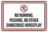 CELYCASY Warnschild, Aufschrift No RunningPushing Or Other Dangerous Horseplay Pool Spa, 30,5 x 45,7 cm
