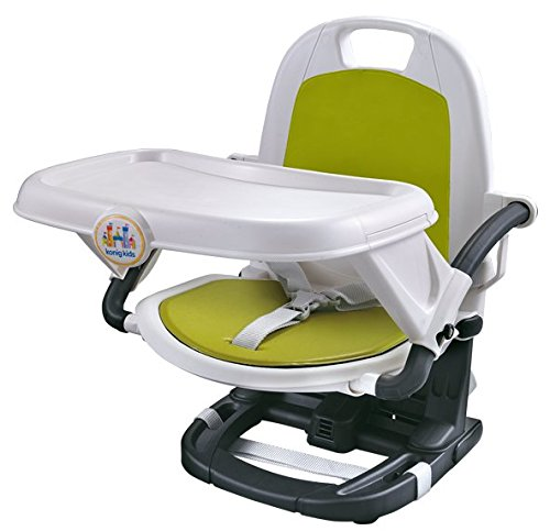 Toyshine Newborn to Toddler Foldable and Easy Carry Booster Seat with Carry Bag