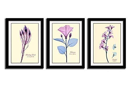 HLJ ART 3-Pink Wand Decor für Schlafzimmer Wohnzimmer Elegantes Blumen Schwarz Giclée-Leinwanddruck für Home Decor Fertig Zum Aufhängen (Stretcher Dollar)