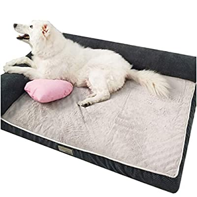 Huijunwenti Dog Bed, Detachable Puppy, Teddy Golden Dog Pad, Large Dog Bed, Small Medium And Large Mattress, Dog Mattress, Pet Supplies, Garfield, Kennel Comfortable and comfortable from huijunwenti