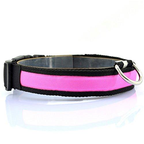 Minkoll Haustier-Hundekatzen-Sicherheits-Kragen, LED Nylonlicht-Haustier-Katzen-Hundeschutz-blinkendes Glühen-Kragen, Rosa-XL -