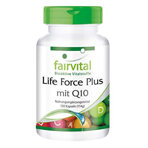 Life Force Plus mit Q10-120 Kapseln, vegetarisch - Multivitamin Mineral mit Ginkgo, Alpha-Liponsäure, Coenzym Q10 u.v.a.m.