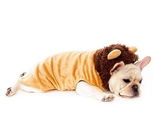 ranphy Kleine Haustiere mit Kapuze Kleidung Winter Hund Löwe Kostüm Trim Mantel hooide Welpen Weste
