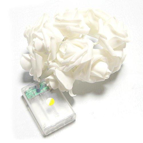 led-luz-toogoor-2m-20-led-multicolor-luz-de-cadena-de-flores-de-blanco-decoracion-del-dormitorio-de-