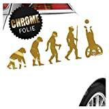 Kiwistar Rollstuhl Ballsport Evolution Aufkleber Sticker 25 Farben Neon Matt