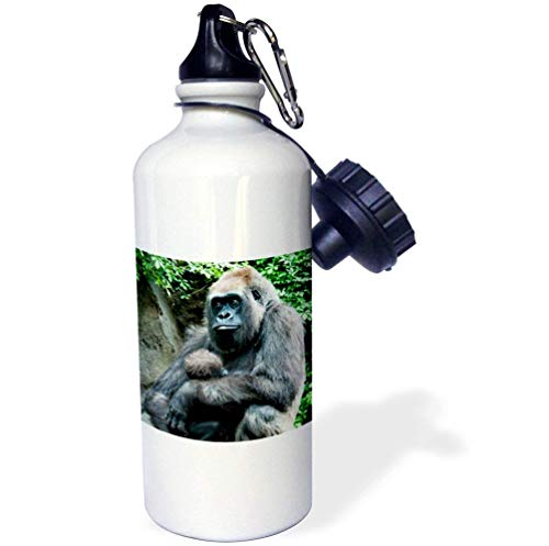 qidushop Gorilla Mama Baby Mehrfarbige Sport-Wasserflasche Edelstahl Isolierbecher Cup Biken Camping 535 ml